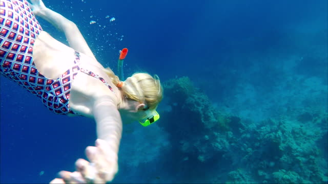 A young woman dives with a mask and a tube among exotic fish and corals. Great vacation and diving video