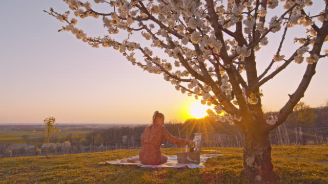 ws young woman drinking champagne on picnic blanket below cherry blossom tree on idyllic hill at sunset - grandangolo tecnica fotografica video stock e b–roll
