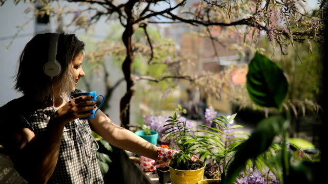 young woman drinks coffee while potting plants - terrazza video stock e b–roll