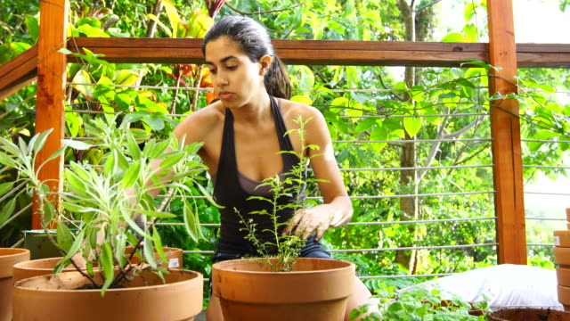 junge frau gärten auf dem deck. - urban gardening stock-videos und b-roll-filmmaterial