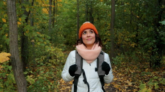 young woman hiking in forest in autumn - trekking video stock e b–roll