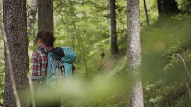 young woman hiking in the woods - styria filmów i materiałów b-roll