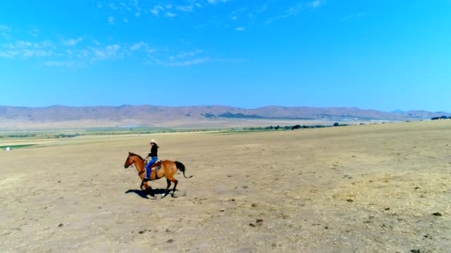 Young Woman Horseback Riding Young woman horseback riding in the open pastures in western USA cowgirl stock videos & royalty-free footage