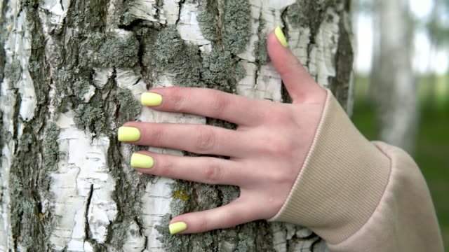 A young woman hugs a birch. The girl is worried about nature and shows love for her.