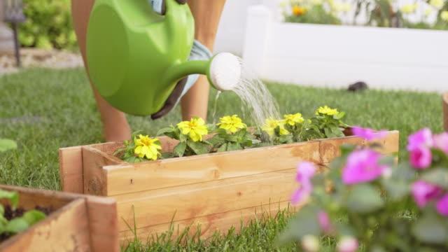Young Woman in a Backyard Garden - video