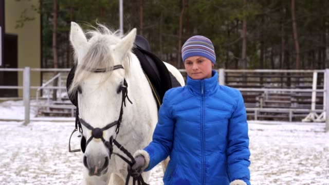 a young woman in a blazer and cap goes and leads a white horse under the reins. - blazer video stock e b–roll