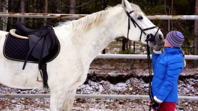 Une jeune femme dans un blazer et sports cap caresse un cheval blanc - Vidéo