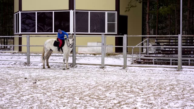 a young woman in a blazer and sports hat is riding a white horse - blazer video stock e b–roll