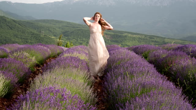 Young Woman In A Lavender Field Beautiful young woman standing in a lavender field, enjoying a windy summer day in mountains and playing with her hair. human hair stock videos & royalty-free footage