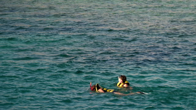 A young woman in a life jacket puts on a mask and looks under the water video