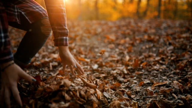 vídeos y material grabado en eventos de stock de mujer joven en un parque tirando hojas - moda de otoño