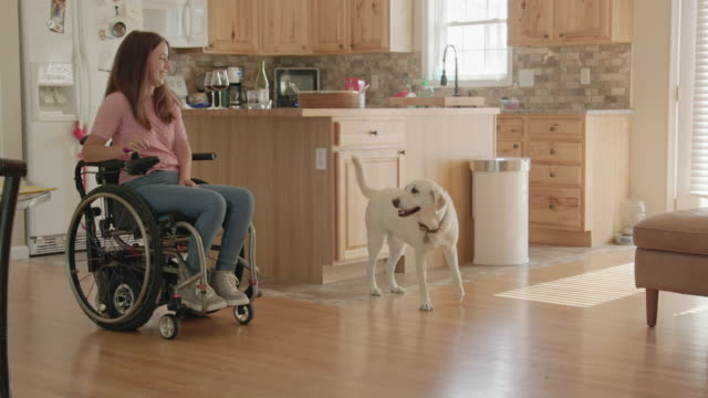 Young Woman in a Wheelchair Interacts with her Dog video