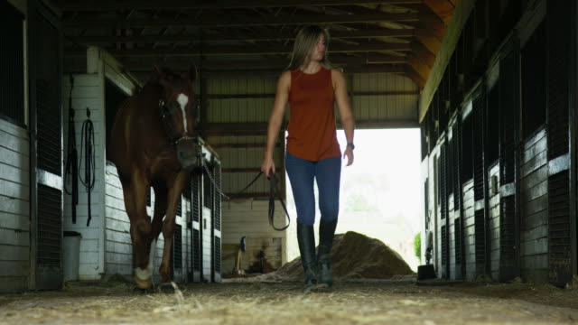 A Young Woman in Her Thirties Leads Her Brown Horse out of a Barn at a Horse Farm