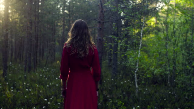 young woman in red dress walking in the forest - woman portrait forest video stock e b–roll