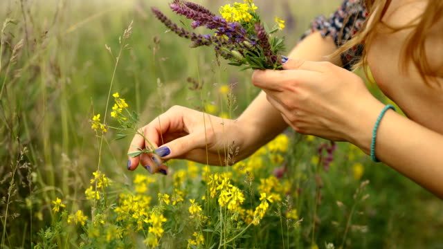 Young woman in rustic dress gathering poppy and wildflowers in sunset light, walking in summer meadow Woman in rustic dress gathering poppy and wildflowers in cloudy weather, walking in summer meadow. Hand picking up flowers in countryside. Rural slow life bunch stock videos & royalty-free footage