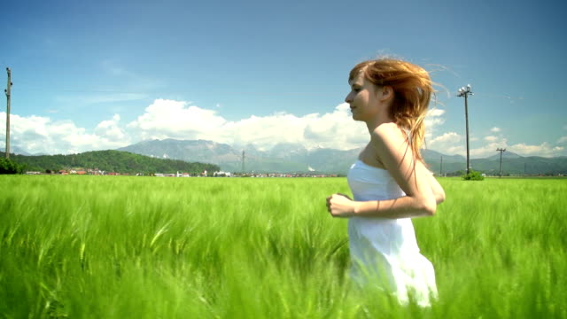 Young woman in white dress running through green wheat field video