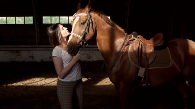 a young woman is caressing her horse - sella video stock e b–roll