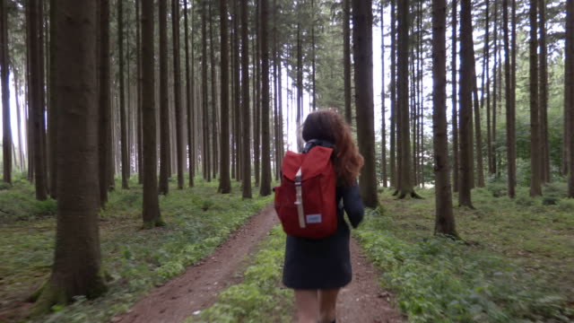 Young woman is running with the backpack in the forest Summer forest story russian ethnicity stock videos & royalty-free footage