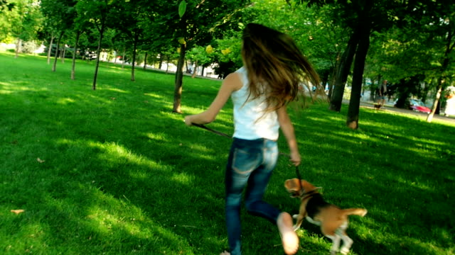 young woman jogging with her beagle dog in summer day. Slow motion video