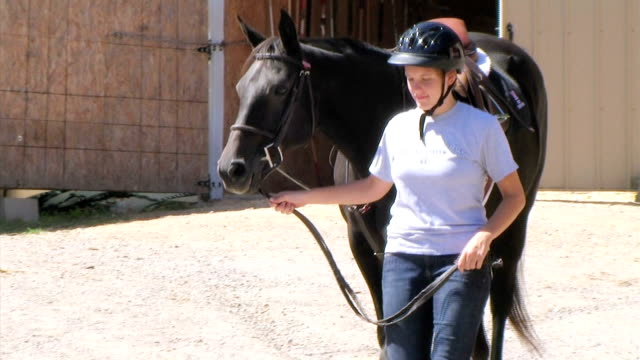 Young Woman Leading Horse (NTSC_link_below) video