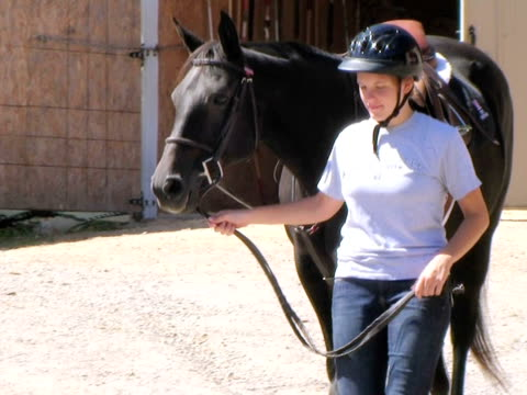 Young Woman Leading Horse (HD_link_below) video