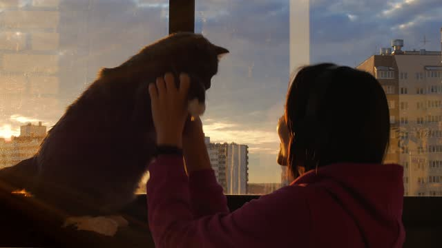 vídeos de stock e filmes b-roll de a young woman listens to music with headphones by a stained-glass window on a balcony in the rays of the setting sun. kisses a gray cat - animal doméstico