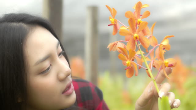 Young woman owner orchids farm.