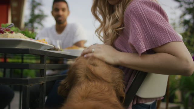 Young woman petting dog next to the dinner table