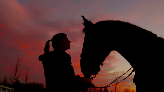 SLOW MOTION: Young woman petting her horse at sunset video