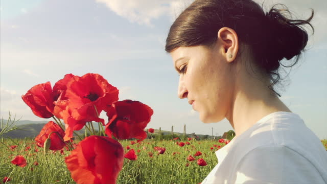 Young woman picking poppies from the field. video