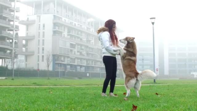 giovane donna giocare con il suo cane-rallentatore - malamute video stock e b–roll