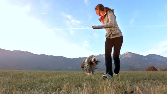genç kadın oyun ile onu köpek - mountain top stok videoları ve detay görüntü çekimi