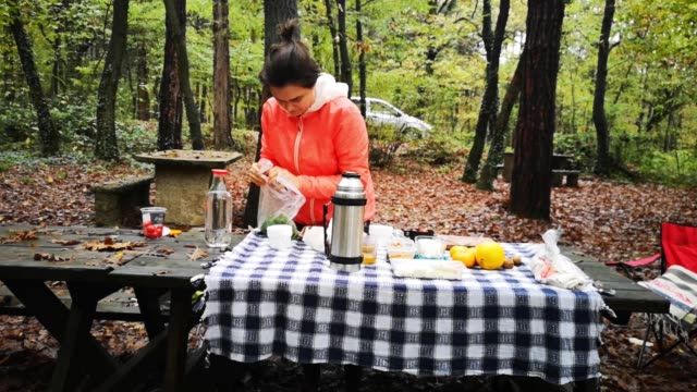 Young woman preparing picnic breakfast table in forest