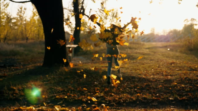 young woman raising her hands and enjoying falling autumn leaves. happy girl showing joyful emotions with sunset at background. lady enjoying beautiful autumn environment. blurred background. slow motion - ноябрь стоковые видео и кадры b-roll