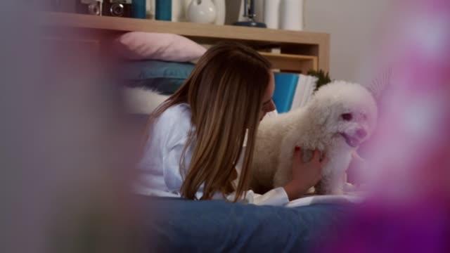 ベッドでリラックスして、彼女のかわいい犬と遊ぶ若い女性 - ビションフリーゼ点の映像素材/bロール