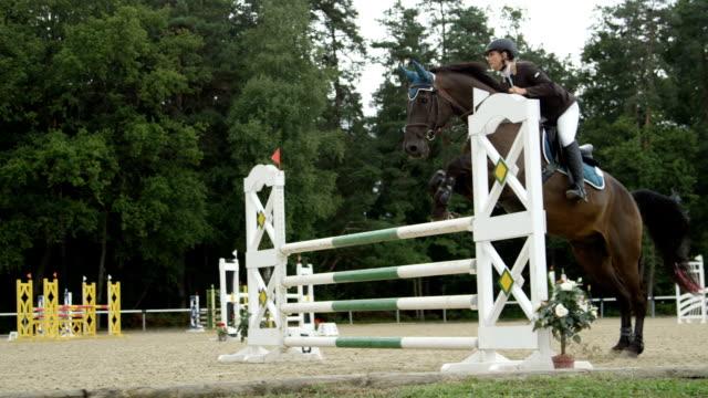 slowmotion: ung kvinna rider hoppa över hinder på stark mörk brun häst - hästhoppning bildbanksvideor och videomaterial från bakom kulisserna