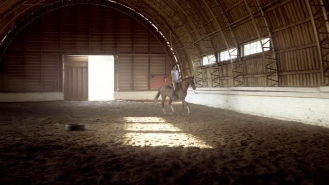 a young woman rides trotting on her horse in an arena - sella video stock e b–roll