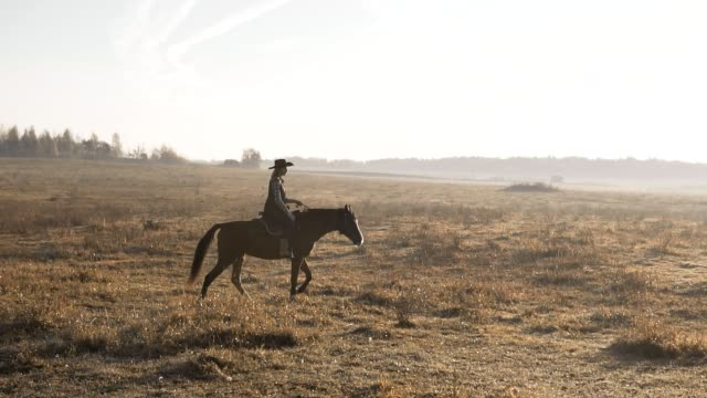 Young woman riding horse at sunrise in field. Cowgirl at brown horse outdoors Beautiful woman riding a horse in background sunrise in field. Young cowgirl in hat at brown horse in slow motion outdoors horseback riding stock videos & royalty-free footage