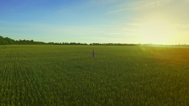 Young woman running field. Landscape woman in farming field video