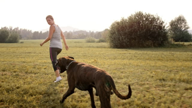 SLO MO TS Young woman running in the meadow with her Boxer dog