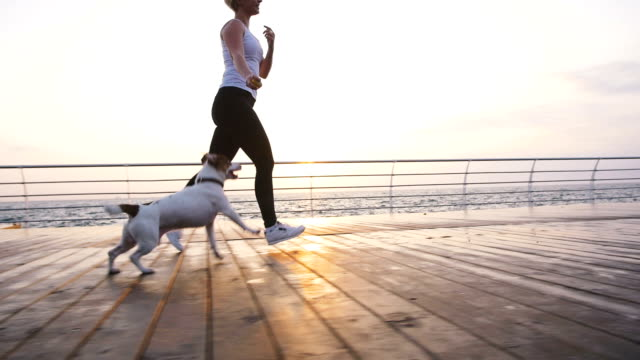 Young woman running with cute dog Jack Russel near the sea, slow motion video