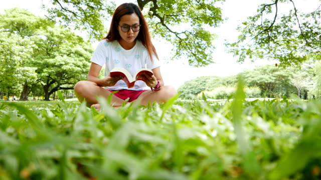 Young Woman Sitting and Reading a Book in the Park video