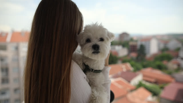 Young woman standing at balcony and looking at her new neighborhood while holding her dog in their new home