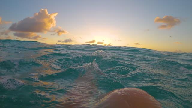 vídeos de stock, filmes e b-roll de pov: jovem nadando no oceano turquesa chuta os pés e assiste ao pôr do sol - azul turquesa