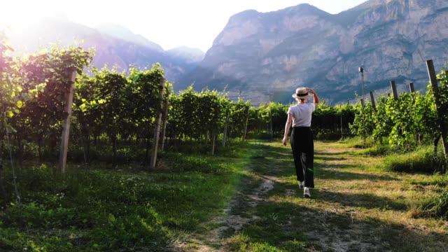 młoda kobieta turystka spaceru w pobliżu winnic krzewów podczas korzystania z letniej podróży podczas wakacji ekoturystyki - ekoturystyka filmów i materiałów b-roll