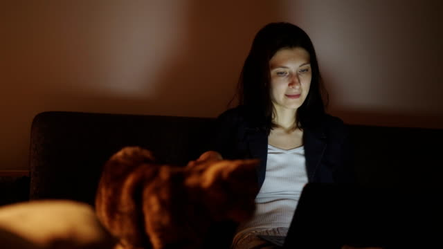 Young woman using laptop computer and stroking the cat sitting on sofa at home in night time video
