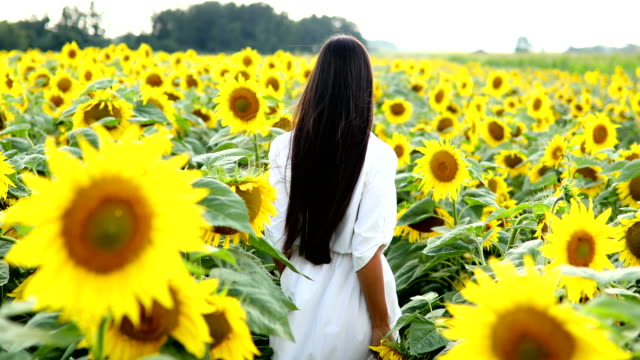 Young woman walking through sunflower field