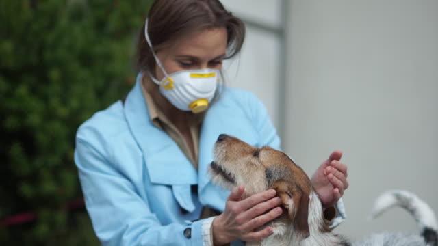 giovane donna che indossa una maschera medica seduta insieme al suo cane. concetto di coronavirus, covid-19 - animale domestico video stock e b–roll