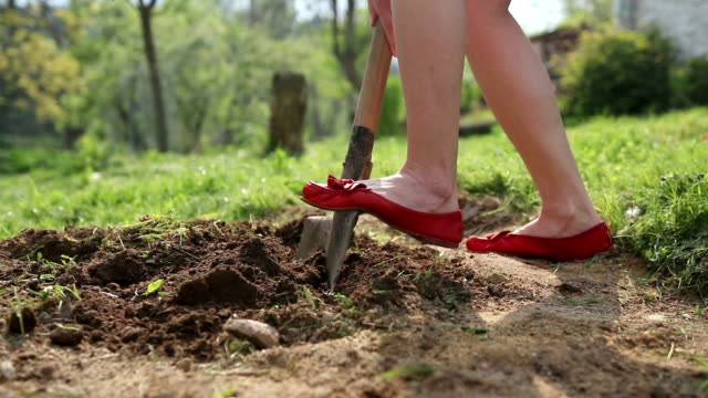 Young woman wearing red pumps digging flower or vegetable bed video