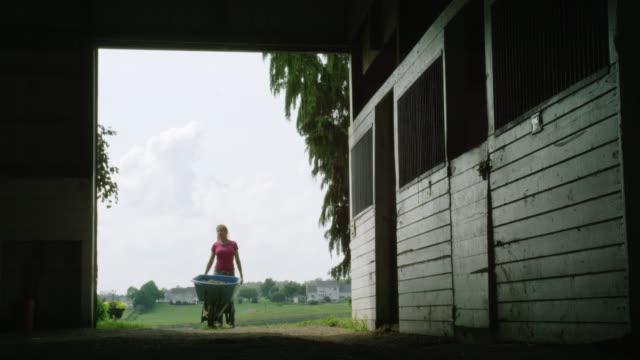 A Young Woman Wheels a Wheelbarrow into a Barn on a Farm